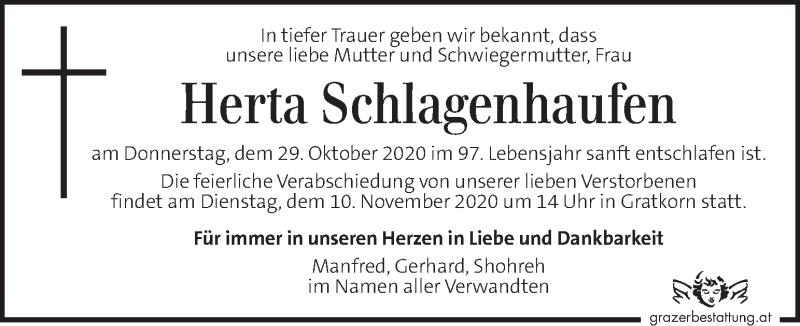Traueranzeige für Herta Schlagenhaufen vom 07.11.2020 aus Kleine Zeitung